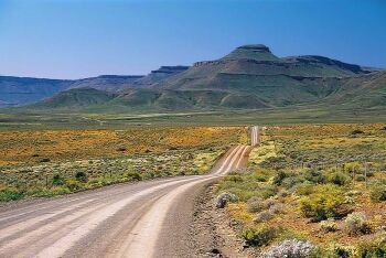 Dirt road in Calvinia area, Northern Cape